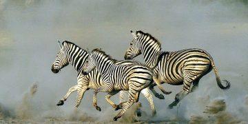 Botswana Migrations