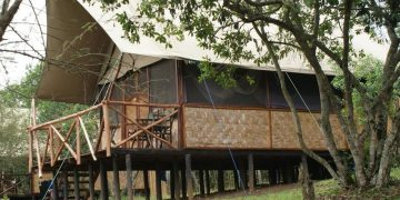 The Bush Lodge (Queen Elizabeth National Park)