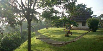 The Haven Uganda