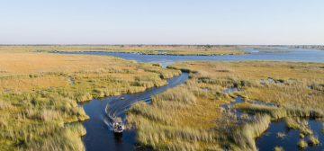Desert & Delta Botswana Special