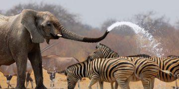 Ontdek Namibië met accommodaties