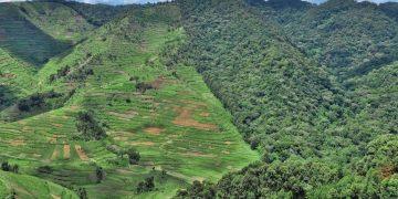 Ontdek Oeganda en Tanzania