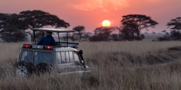 Romantic Botswana