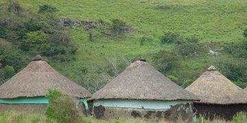 Hoogtepunten Zuid-Afrika reis via de Wild Coast