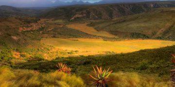 Luxe rondreis Zuid-Afrika via de Tuinroute en Route 62