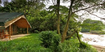 Ishasha Jungle Lodge
