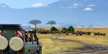 De 5 mooiste safari parken van Kenia eindigend met 5 dagen strand