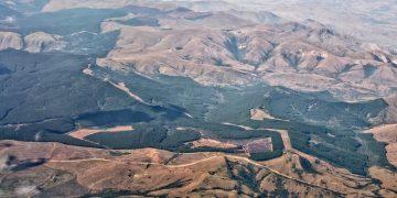 Southern Kruger